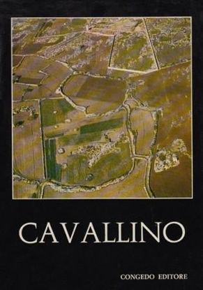 Immagine di Cavallino. Scavi e ricerche (1964-1967)