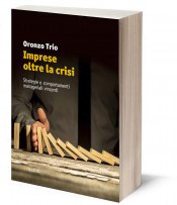 Immagine di IMPRESE OLTRE LA CRISI. STRATEGIE E COMPORTAMENTI MANAGERIALI VINCENTI