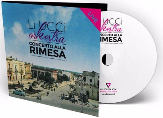 Immagine di CONCERTO ALLA RIMESA (GLI UCCI ORKESTRA)