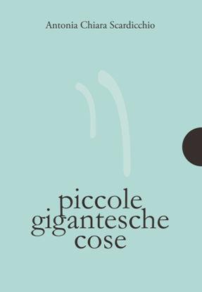 Immagine di PICCOLE GIGANTESCHE COSE