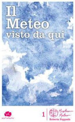 Immagine di IL METEO VISTO DA QUI
