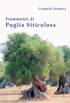 Immagine di FRAMMENTI DI PUGLIA SITICULOSA